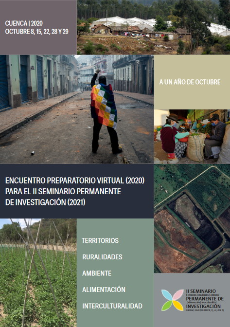 Afiche Encuentro Preparatorio Virtual Grupo Tierra